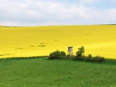 immobilienbewertung blankenhain landwirtschaft