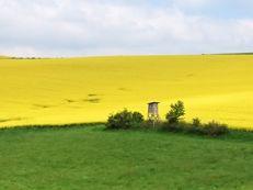 immobilienbewertung querfurt landwirtschaft